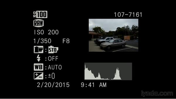 Understanding the raw format and in-camera histograms: Exploring Photography: Exposure and Dynamic Range
