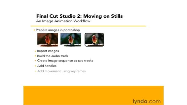 Workflow for Final Cut Pro and Motion : Final Cut Studio 2: Moving on Stills