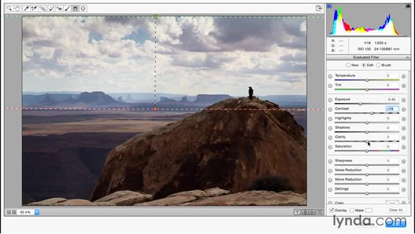 An overview of using Camera Raw as a filter: Photoshop for Designers: Filters