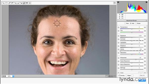 Portrait retouching using the Camera Raw filter: Photoshop for Designers: Filters