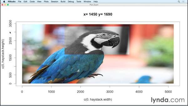 Applying CCF to images: Code Clinic: R