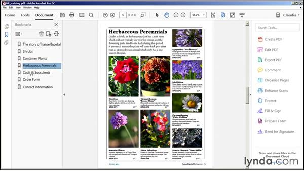 Page display, document navigation, and controlling magnification: Acrobat DC Essential Training