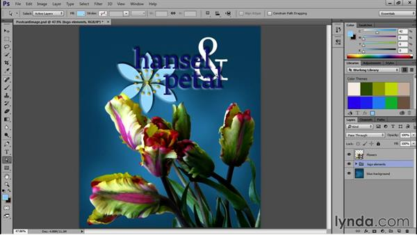 PDFs from Adobe Photoshop: Acrobat DC Essential Training
