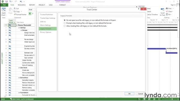 Choosing security settings for importing data: Advanced Microsoft Project