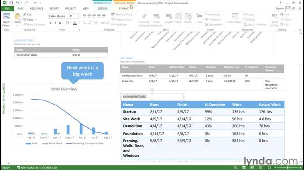 Customizing a text box in a graphical report: Advanced Microsoft Project