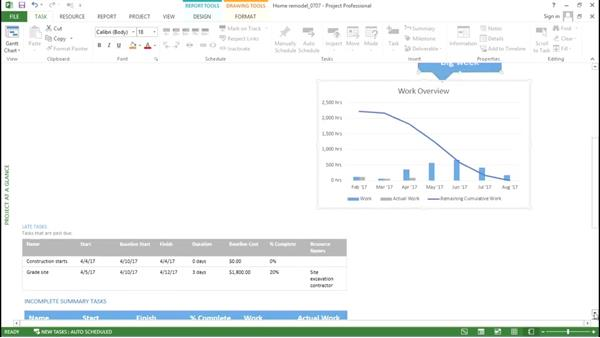 Arranging graphical report components: Advanced Microsoft Project