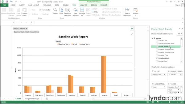 Choosing the fields displayed in a visual report: Advanced Microsoft Project