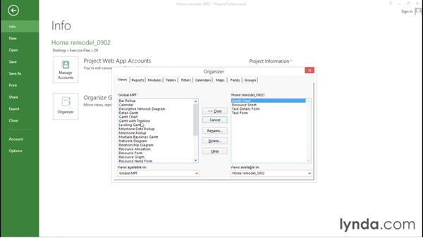 Understanding the Project Organizer: Advanced Microsoft Project