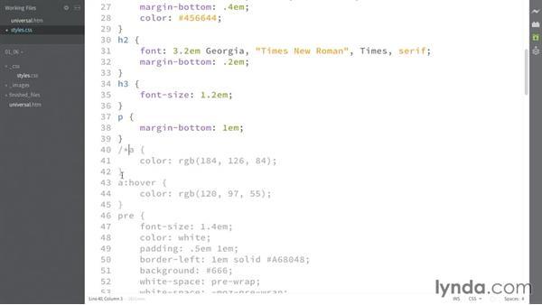 Universal selector: CSS: Selectors