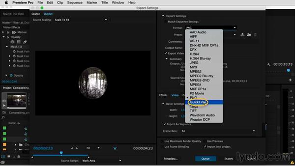 Codecs that support the alpha channel: Premiere Pro Guru: Compositing and Masks