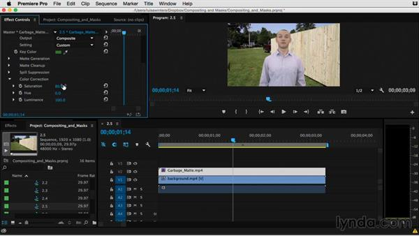 Improving the image with color correction: Premiere Pro Guru: Compositing and Masks