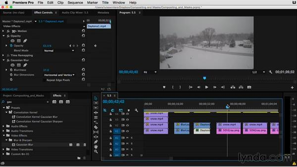 How to use the Complex category: Premiere Pro Guru: Compositing and Masks