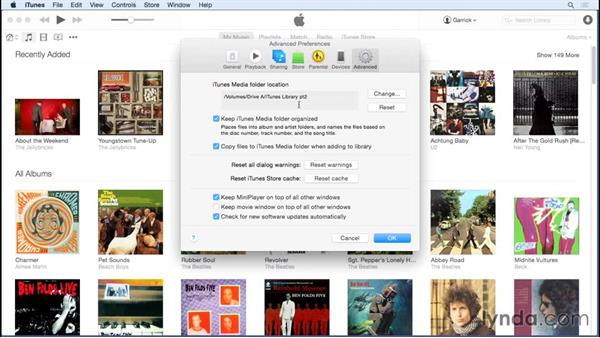 Extending your library: Up and Running with iTunes 12