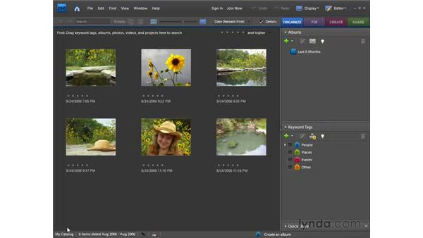 Understanding the Organizer's catalog system: Photoshop Elements 7 for Windows Essential Training
