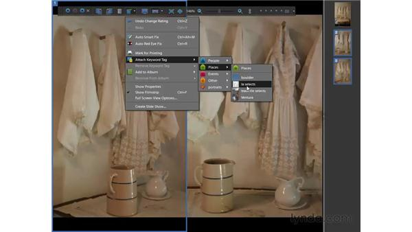 Comparing photos: Photoshop Elements 7 for Windows Essential Training