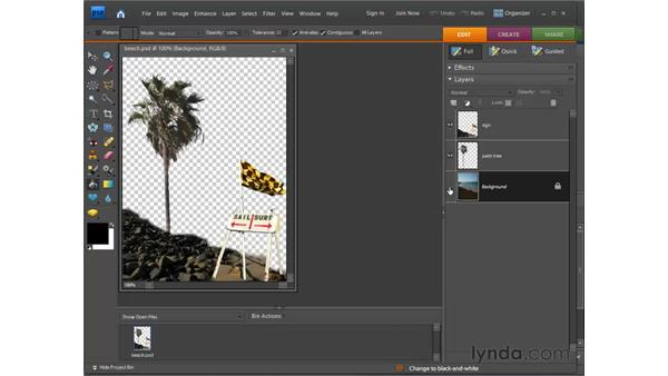Understanding layers: Photoshop Elements 7 for Windows Essential Training