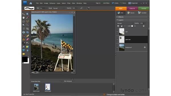 Working in the Layers palette: Photoshop Elements 7 for Windows Essential Training