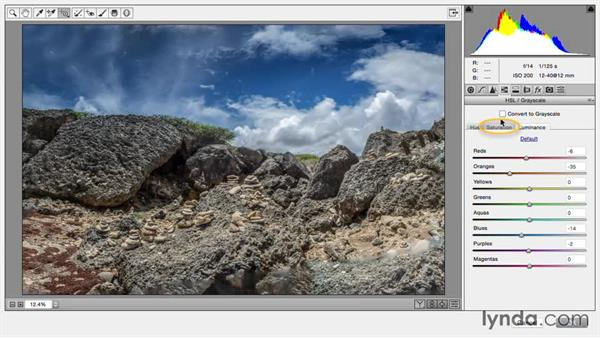 Invoking Camera Raw as a filter: Creating Panoramas with Lightroom