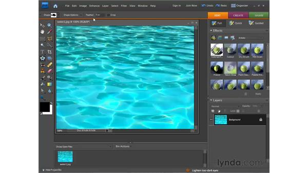 Using the Cookie Cutter tool: Photoshop Elements 7 for Windows Essential Training