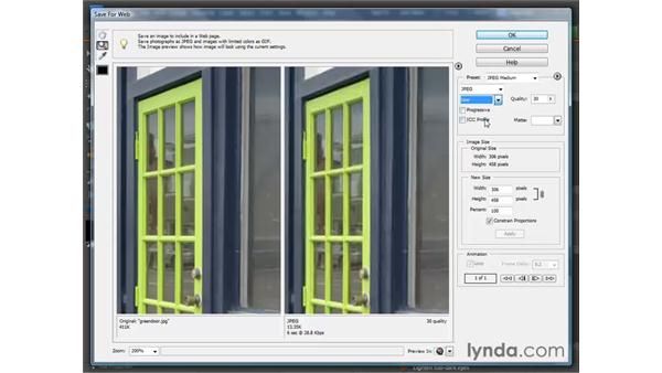 Preparing images for the web: Photoshop Elements 7 for Windows Essential Training