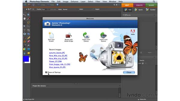 Using the Welcome screen: Photoshop Elements 6 for Mac Essential Training