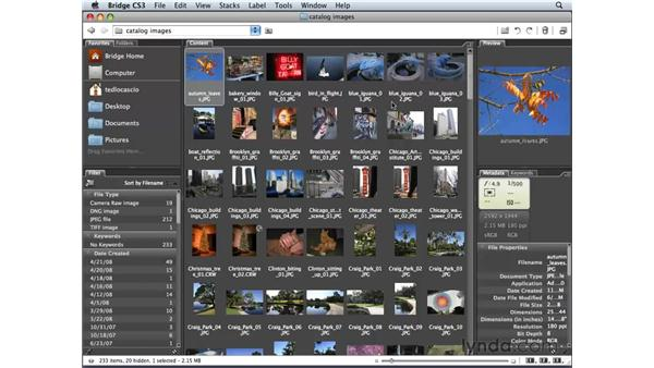 Creating and saving a custom workspace: Photoshop Elements 6 for Mac Essential Training