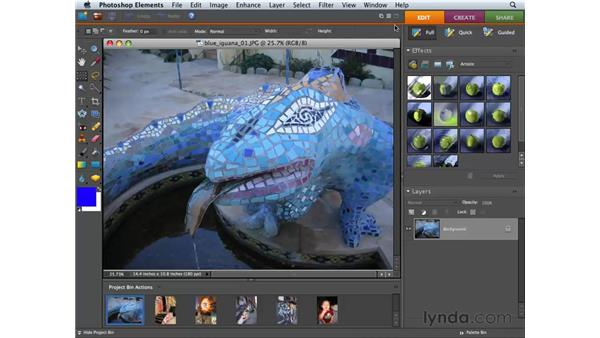 Working with palettes and the Palette Bin: Photoshop Elements 6 for Mac Essential Training