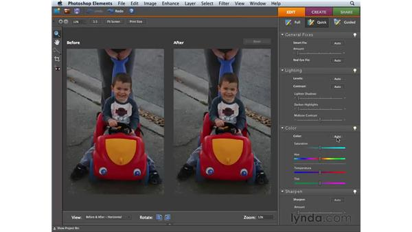 Understanding Auto Color and making tonal adjustments: Photoshop Elements 6 for Mac Essential Training