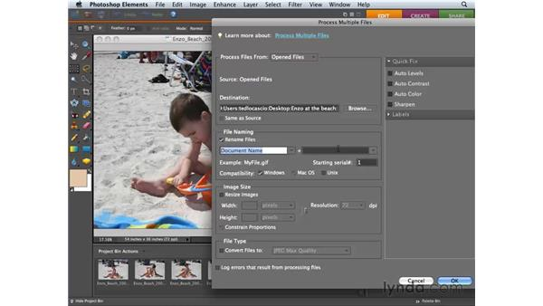 Processing multiple files: Photoshop Elements 6 for Mac Essential Training