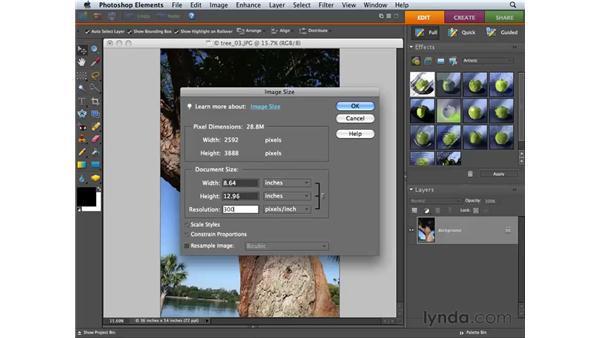 Resizing images: Photoshop Elements 6 for Mac Essential Training