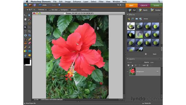 Using the Quick Selection tool: Photoshop Elements 6 for Mac Essential Training