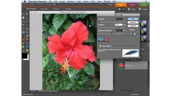 Using Refine Edge: Photoshop Elements 6 for Mac Essential Training