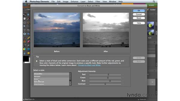 Converting color images to black and white: Photoshop Elements 6 for Mac Essential Training
