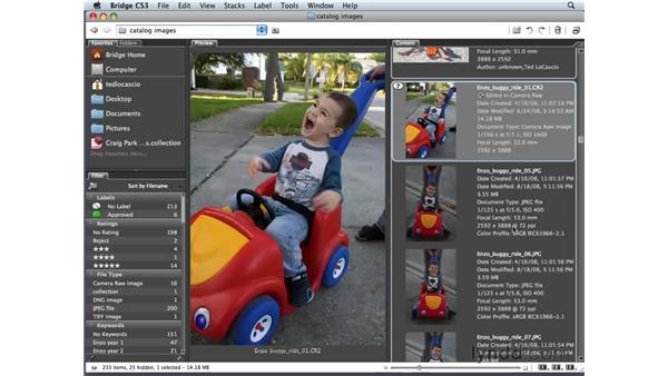 Understanding Camera Raw: Photoshop Elements 6 for Mac Essential Training