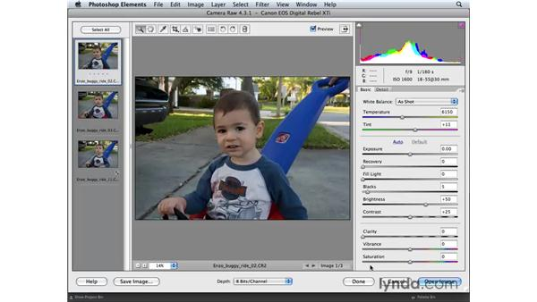 Opening Camera Raw images from Bridge: Photoshop Elements 6 for Mac Essential Training