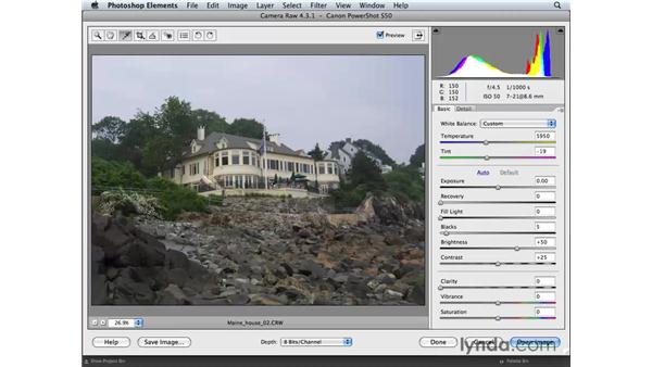 Applying tonal and color adjustments in Camera Raw: Photoshop Elements 6 for Mac Essential Training