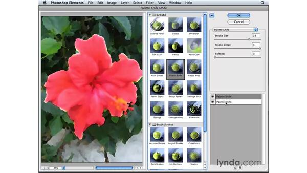 Painting with the Filter Gallery: Photoshop Elements 6 for Mac Essential Training
