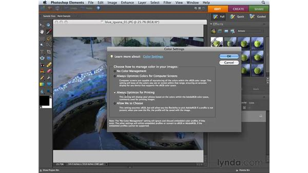Choosing color settings: Photoshop Elements 6 for Mac Essential Training