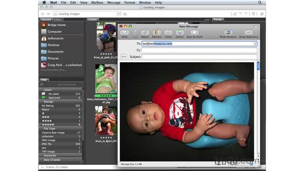 Attaching images to emails: Photoshop Elements 6 for Mac Essential Training