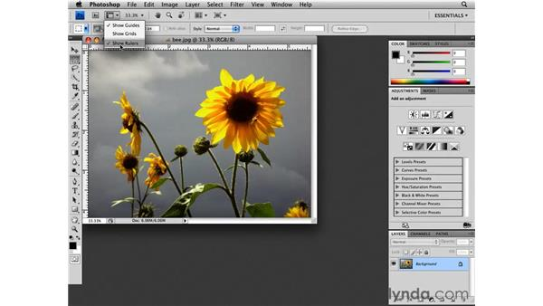 Touring the interface: Photoshop CS4 Essential Training