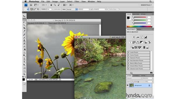 Working with tabbed documents: Photoshop CS4 Essential Training