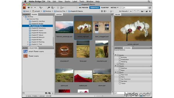 Choosing color settings: Photoshop CS4 Essential Training