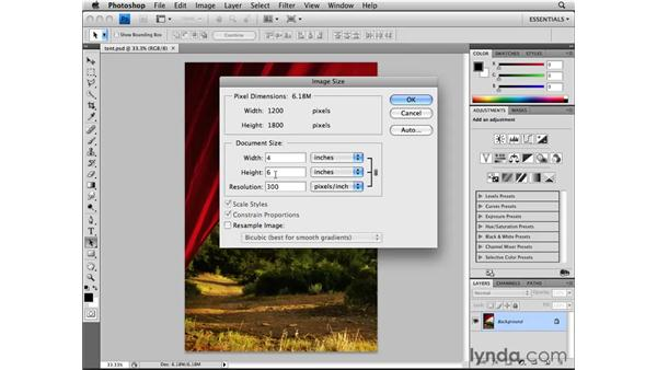 Resizing and image resolution: Photoshop CS4 Essential Training