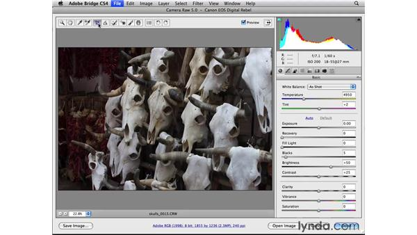 : Photoshop CS4 Essential Training