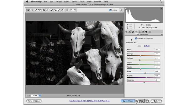 Working in the HSL/Grayscale and Split Toning panels: Photoshop CS4 Essential Training