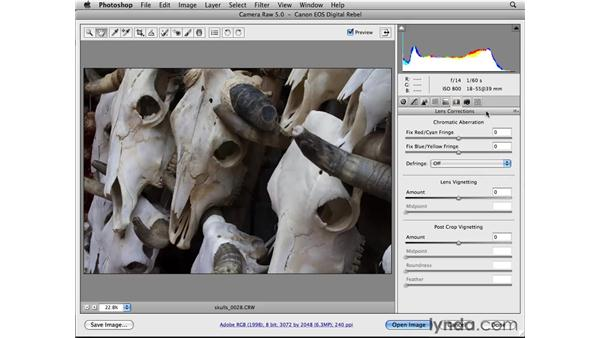 Looking at the other Camera Raw panels: Photoshop CS4 Essential Training