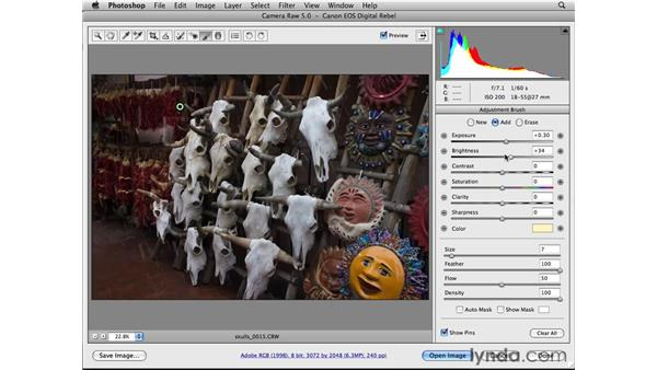 Using the Adjustment Brush tool: Photoshop CS4 Essential Training