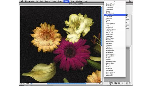 Working in the Filter Gallery: Photoshop CS4 Essential Training