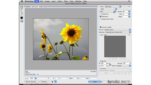 Preparing photos for the web: Photoshop CS4 Essential Training