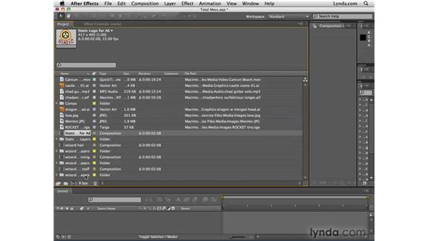 Organizing and searching in the Project panel: After Effects CS4 Essential Training
